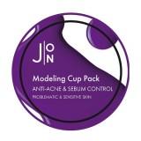 Альгинатная маска для проблемной и жирной кожи J:ON Anti-Acne & Sebum Control Modeling Pack